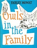 Owls in the Family - Revised