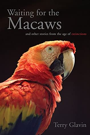 Waiting For The Macaws by Terry Glavin