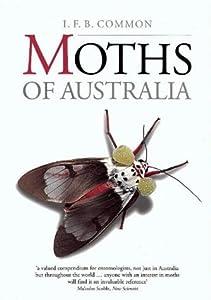 Moths of Australia