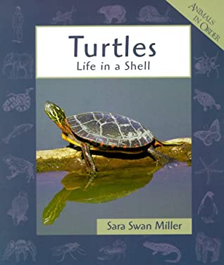 Turtles: Life In A Shell