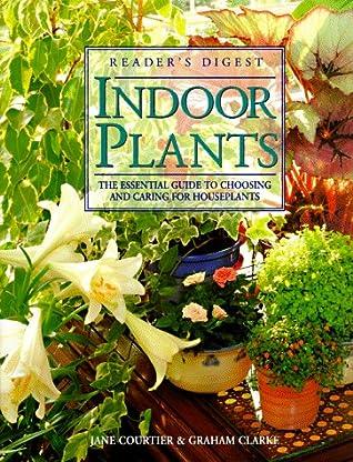 Indoor plants by Graham  Clarke