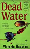 Dead Water (A Loon Lake Mystery, #3)