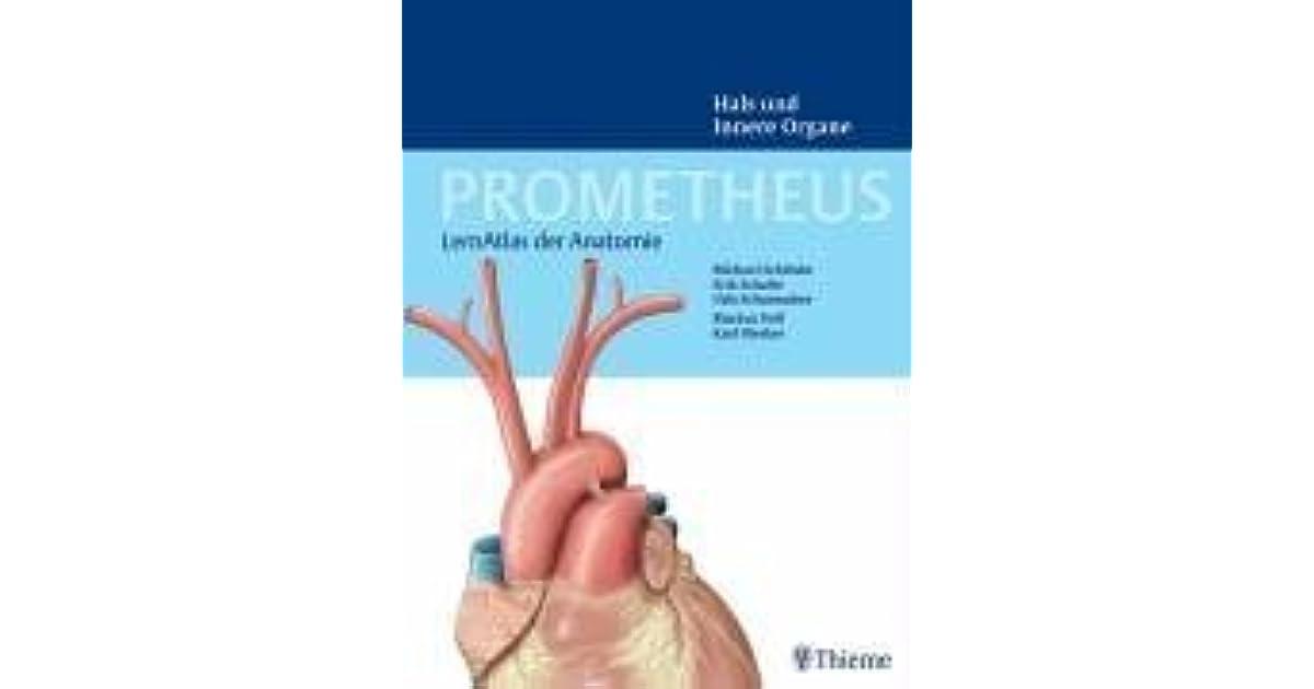 PROMETHEUS LernAtlas der Anatomie: Hals und Innere Organe by Michael ...