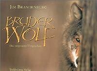 Bruder Wolf : das vergessene Versprechen
