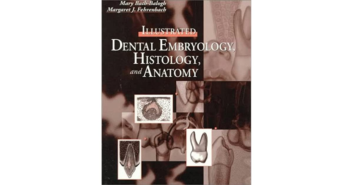 Illustrated Dental Embryology Histology And Anatomy By Mary Bath