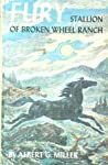 Fury, Stallion Of Broken Wheel Ranch (Fury, #1)