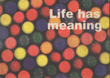Life Has Meaning by Mark Pawson
