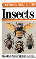 A Field Guide to the Insects:  America North of Mexico (Peterson Field Guide Series)