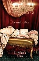 Dreamhunter (The Dreamhunter Duet, #1)