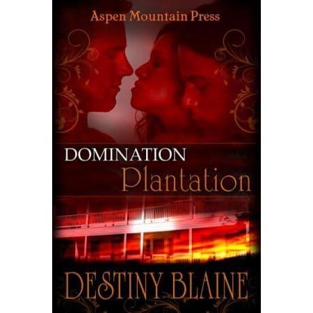 Best domination historical novels