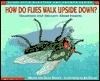 How do flies walk upside down