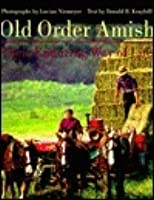 the amish way of life essay View notes - the amish way - informal essay from phi 101 at hanover the amish are a group of christians that form a subgroup of the mennonite churches the amish church was formed in the.