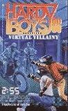Virtual Villainy (Hardy Boys: Casefiles, #86)