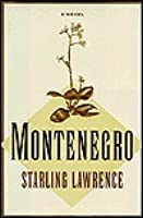 Montenegro: A Novel