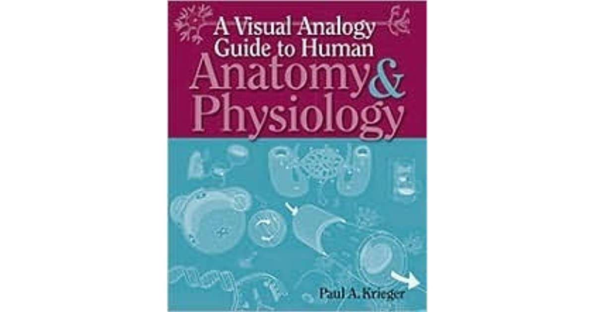 A Visual Analogy Guide To Human Anatomy Physiology By Paul A Krieger