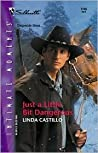 Just A Little Bit Dangerous (High Country Heroes, #2)
