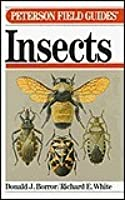 A Field Guide to Insects America North of Mexico (Peterson Field Guide Series, 19)