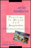 Journeys in Dream and Imagination: The Hallucinatory Memoir of a Poet in a Coma