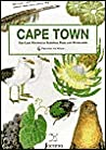 Cape Town: The Cape Peninsula National Park and Winelands