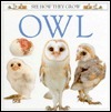 Owl (See How They Grow)