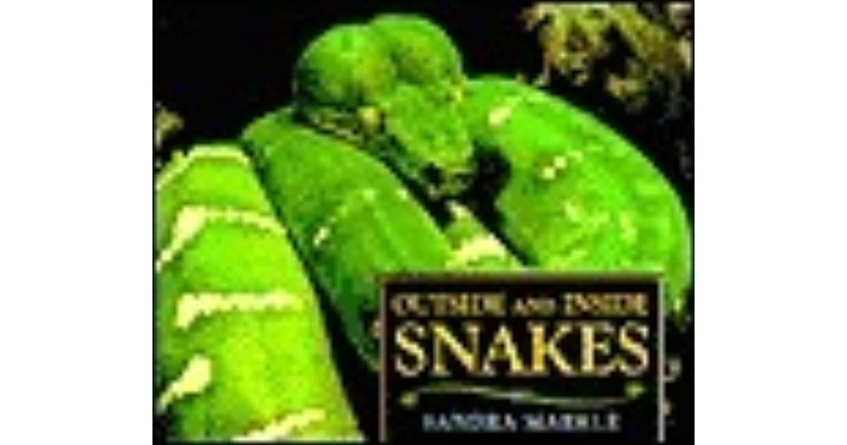 Outside And Inside Snakes By Sandra Markle
