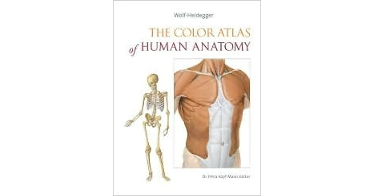 The Color Atlas Of Human Anatomy By Petra Kpf Maier