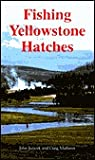 Fishing Yellowstone Hatches