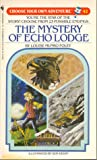 The Mystery of Echo Lodge (Choose Your Own Adventure, #42)