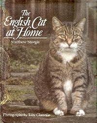 English Cat at Home