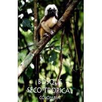 Bosque Seco Tropical Colombia By Juan Manuel Diaz Merlano