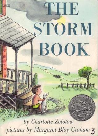 severe storm book report