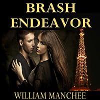 Brash Endeavor (A Stan Turner Mystery #2)