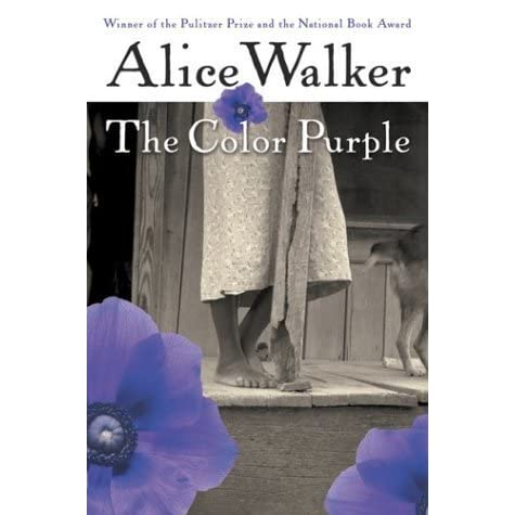 an analysis of social conflicts in the novel the color purple by alice walker The setting of the color purple gives many subtle and social environment are the resulting conflicts that celie faces throughout the novel would.