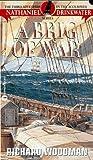 A Brig of War (Nathaniel Drinkwater, #3)