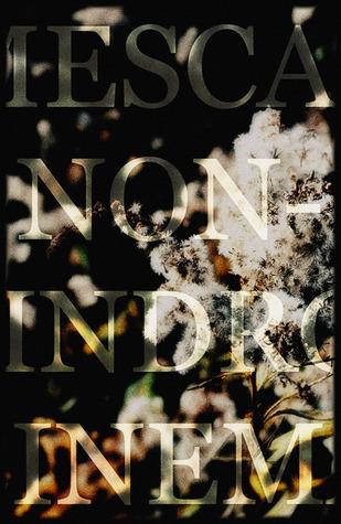 MESCAL NON-PALINDROME CINEMA by David Tomaloff