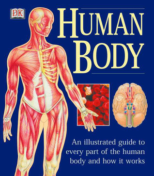 The Human Body by Ann Baggaley