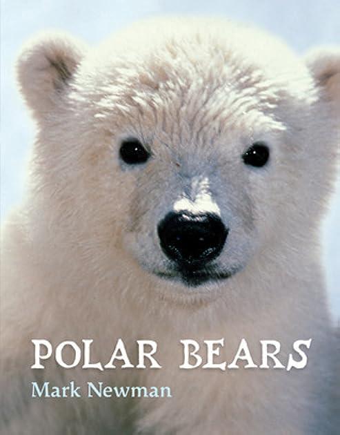 10150655._UY630_SR1200630_ polar bears by mark newman
