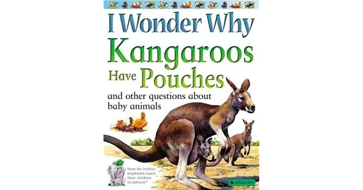 I Wonder Why Kangaroos Have Pouches: And Other Questions About Baby Animals by Jenny Wood
