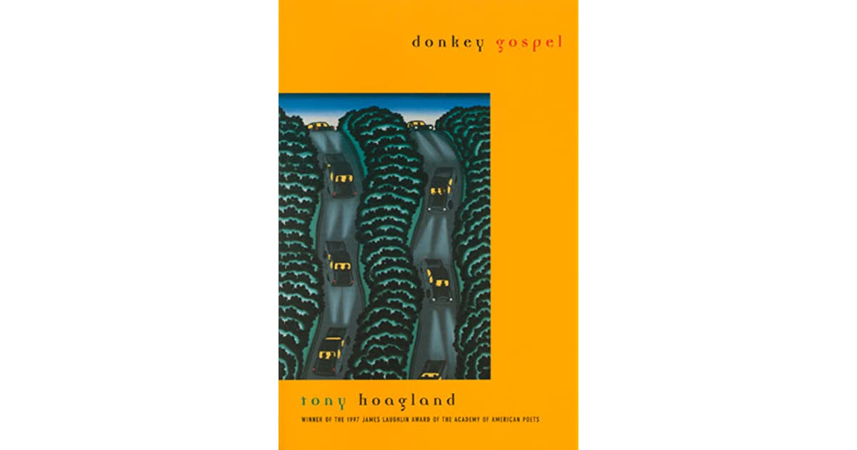 the experience of the author in the poem america by tony hoagland What drew me to tony hoagland's poetry, when i first picked up a copy of  these poems don't explore the consequences of the narrator's experiences  the second poem, america, continues to up the ante in the dissatisfaction the author.