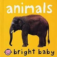 Bright Baby Animals