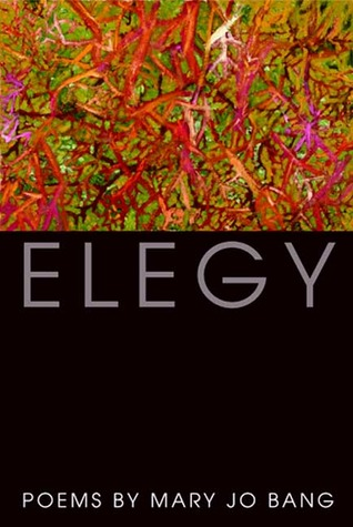 Elegy by Mary Jo Bang
