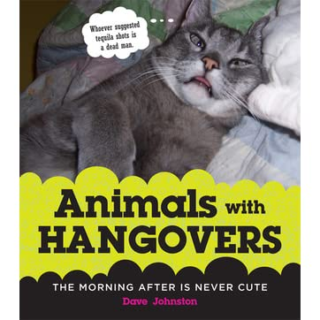 Animals with Hangovers: The Morning After Is Never Cute by