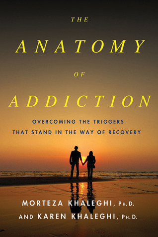 The Anatomy of Addiction: Overcoming the Triggers That Stand in the Way of Recovery