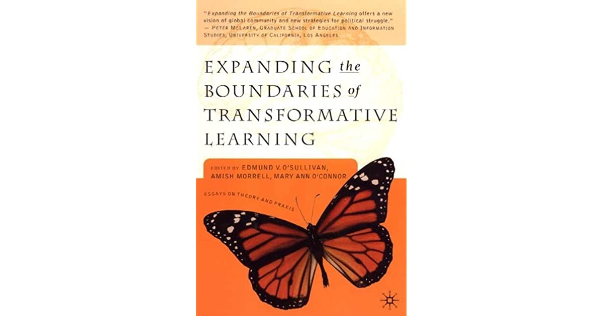 Buy Fostering Diversity Through Transformative Learning essay paper online