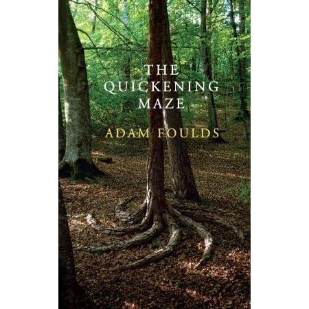 The Quickening Maze by Adam Foulds