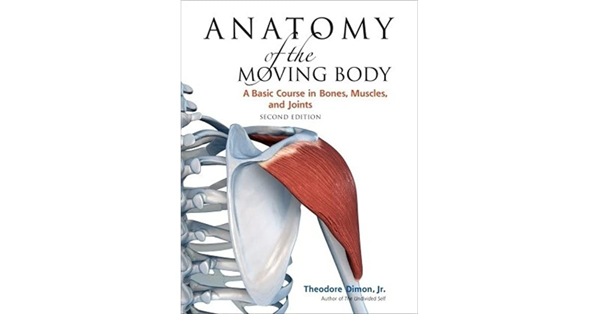 Anatomy Of The Moving Body A Basic Course In Bones Muscles And
