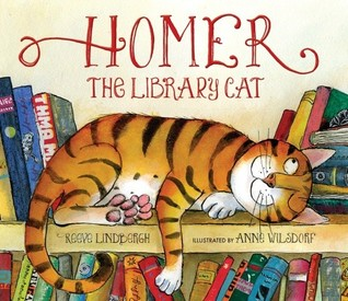 Homer the Library Cat