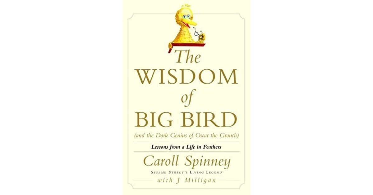 Liz W S Review Of The Wisdom Of Big Bird And The Dark