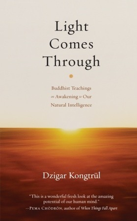 Light-Comes-Through-Buddhist-Teachings-on-Awakening-to-Our-Natural-Intelligence