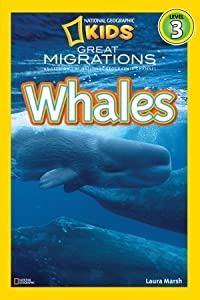 Great Migrations: Whales